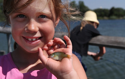 """Daphne Burman, 7 from Cary, shows off her 2 3/4 inch Blue Gill during the McHenry County Conservation District's """"Hooked on Fishing"""" family event at The Hollows in Cary Sunday June 10, 2012. Awards were given at the end of the event for biggest, smallest and most fish caught. Burman had caught 13 fish before 10:30am from the pier on Lake Atkins.  John Konstantaras photo for the Northwest Herald"""