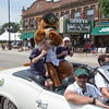 Kane County Cougars Mascot Ozzie at The 64th Annual Swedish Days Parade in Geneva, IL on Sunday, June 23, 2013 (Sean King for Shaw Media)