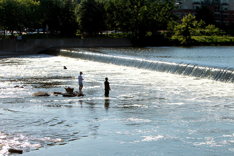 Fishermen wait for a catch while wading in the Fox River in Geneva.