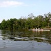 Members of the St. Charles Rowing Club train on the Fox River near Ferson Creek Park in St. Charles.