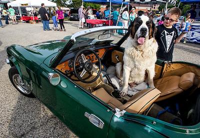 hcom_adv_Car_Show_Dog.jpg