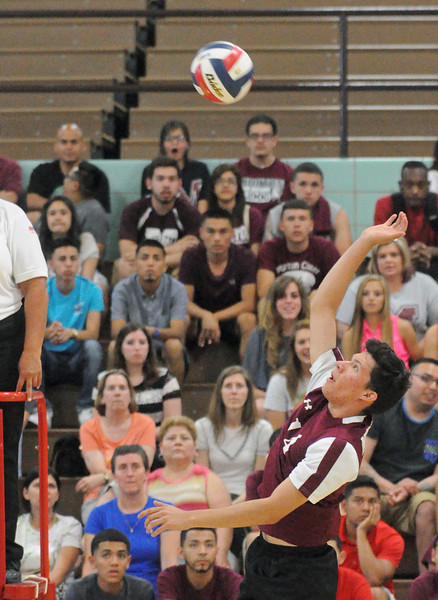 Morton wins volleyball sectional final