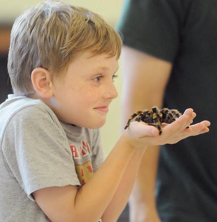 Reptiles visit kids up-close