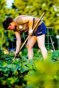 hnews_thur0616_Community_Garden3.jpg