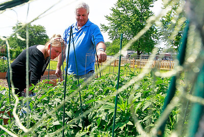 Candace H. Johnson Annemarie Toby, of Fox Lake, master gardener with the University of Illinois Extension, helps Donny Schmit, mayor of Fox Lake, with his vegetable plants at the Community Garden of Fox Lake on Forest Avenue.