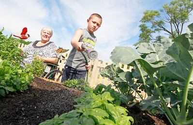 Candace H. Johnson Linnea Pioro, of Fox Lake guides her grandson, Kyle Taber, 8, on how to water their vegetable plants at the Community Garden of Fox Lake on Forest Avenue.
