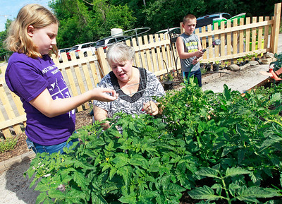 Candace H. Johnson Melanee Taber, 10, works with her grandmother, Linnea Pioro, and brother, Kyle, 8, all of Fox Lake, on their vegetable plants at the Community Garden of Fox Lake on Forest Avenue.