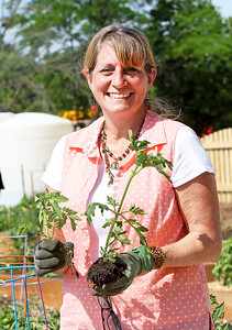 Candace H. Johnson Monica Marr, of Fox Lake holds up a tomato plant from her garden and a possible weed at the Community Garden of Fox Lake on Forest Avenue.