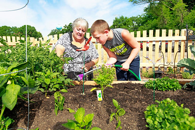 Candace H. Johnson Linnea Pioro, of Fox Lake helps her grandson, Kyle Taber, 8, water some of their vegetable plants on a double raised garden bed at the Community Garden of Fox Lake on Forest Avenue.