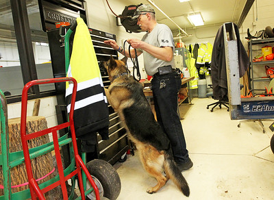 LCJ_0608_TOPS_Dog_TrainingD