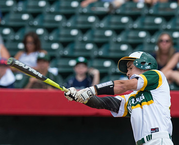 Paul Bergstrom for Shaw Media Crystal Lake South's Brent Chubb (15) bats during the 4A State Semi-Final game against New Trier hosted at Silver Cross Field in Joliet.