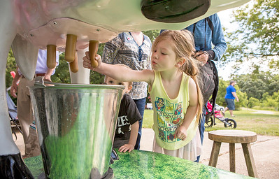 "Mike Greene - For Shaw Media  Hazel Brozenec, 4 of Crystal Lake, tries her hand at an interactive cow exhibit during the 10th annual ""A Day at Petersen Farm"" Sunday, June 25, 2017 in McHenry. This year's event featured hayrides, farm animals, music and children's games as well as exhibits showing McHenry County farm life in 1916."