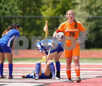 Lemont goalkeeper Michelle Jerantowski (28) reacts after receiving a red card during a Class 2A third place state final at North Central College in Naperville June 3. Sean King for Shaw Media