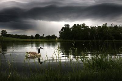 hnews_0606_Weather_Art_01