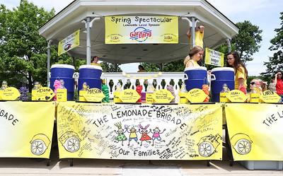 nwh.060818.lemonade.stand