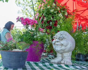 Flowers, fruits and vegetables were ready for purchase at the Harms Farm Stand during the Downtown Crystal Lake Farmers Market Saturday, June 8, 2019 in Crystal Lake.  KKoontz – For Shaw Media