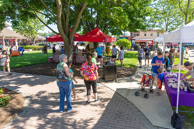 Area residents attended the Downtown Crystal Lake Farmers Market Saturday, June 8, 2019 in Crystal Lake.  KKoontz – For Shaw Media