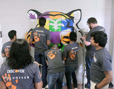Candace H. Johnson-For Shaw Media Several volunteers paint a tiger mural in a hallway during the Discover Business Technology and Volunteer Day at Gavin South Middle School in Ingleside. Over 500 volunteers from Discover Financial Services came to Gavin South to help at the event. A tiger is the mascot for Gavin South.(6/20/19)