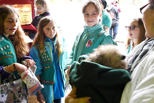Girl Scouts from troop 826, from left, Harley Cravens, Ava Micho, Emma Halvorsen and Amanda Apmann look at Ciega an opossum that has been at the Fox Valley Wildlife Center for two years. Ciega came to the Fox Valley Wildlife Center from Washington state and attends many of the center's educational events.