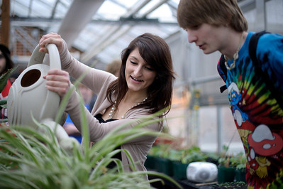 Daniel J. Murphy - dmurphy@shawmedia.com  David Lund, 18, (left) and Arlinda Fasliu, 17, (right) water plants in the green house at Woodstock High School Wednesday February 29, 2012 in Woodstock. Woodstock students have been tracking their carbon footprint for an international campaign started at Stanford.