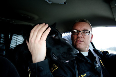 Daniel J. Murphy - dmurphy@shawmedia.com  The Marengo police dog, Shadow, rides on patrol with Sgt. Riley Thursday March 1, 2012 in Marengo. The department putting the word out that donations are welcome to help fund Shadow's continued training.