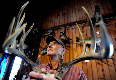 Sarah Nader - snader@shawmedia.com Dave Kranz from Dave's Bait, Tackle and Taxidermy in Crystal Lake holds an antler from a buck that he killed during the last hunting season.