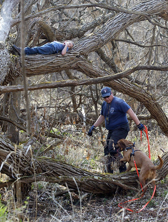 Hiding on a branch, eight year-old Corey Binder of South Beloit, Il. is found Sunday, March 18, 2012 by K9 handler Jim Pignatari and Tater a Bloodhound from McHenry at the Illinois Wisconsin Search and Rescue Dogs training exercise in Hononegah Forest Preserve near Rockton, Il.  (AP Photo - Northwest Herald/ H. Rick Bamman) ***CHICAGO LOCALS OUT***