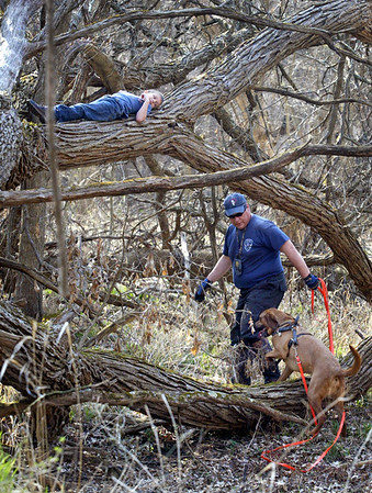 Hiding on a branch, eight year-old Corey Binder of South Beloit, Il. is found Sunday, March 18, 2012 by K9 handler Jim Pignatari (cq) and Tater a Bloodhound from McHenry at the Illinois Wisconsin Search and Rescue Dogs training exercise in Hononegah Forest Preserve near Rockton, Il. (AP Photo - Northwest Herald/ H. Rick Bamman) ***CHICAGO LOCALS OUT***