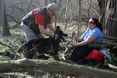 K9 handler Dennis Schenk and Gus find Jodie Binder during a Illinois Wisconsin Search and Rescue Dogs training exercise in Hononegah Forest Preserve near Rockton, Il.(AP Photo - Northwest Herald/ H. Rick Bamman) ***CHICAGO LOCALS OUT***