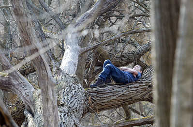 Eight year-old Corey Binder of South Beloit, Il. watches for Woodpeckers as he waits for members of the Illinois Wisconsin Search and Rescue Dogs to find his hiding place Sunday, March 18, 2012 in the Hononegah Forest Preserve near Rockton, Il. (AP Photo - Northwest Herald/ H. Rick Bamman) ***CHICAGO LOCALS OUT***