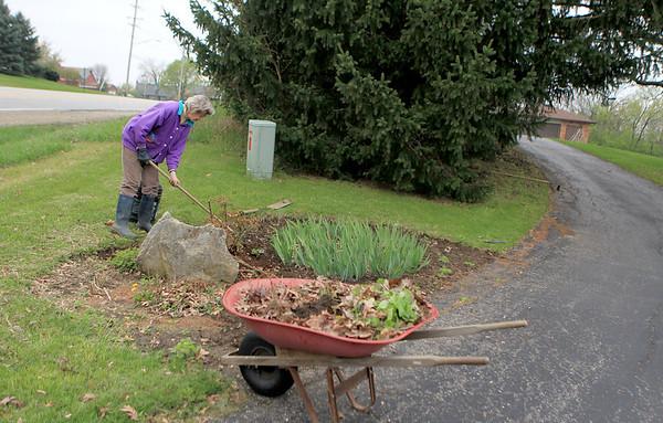 Sandy Bressner - sbressner@shawmedia.com<br /> Martha Steininger gardens outside her Batavia Township home Friday afternoon.