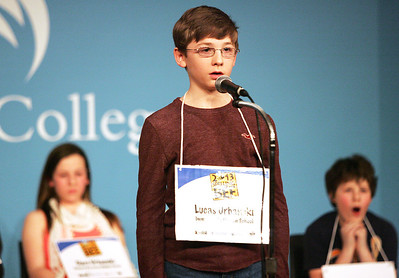 Monica Maschak - mmaschak@shawmedia.com Lucas Urbanski, of Immanuel Lutheran School, spells into the microphone at the Annual McHenry County Spelling Bee at McHenry County College on Wednesday, March 6, 2013. Urbanski overcame 12 competitors and 44 rounds to become this year's champion. He will move on to compete in the 2013 Scripps National Spelling Bee in Washington, D.C.