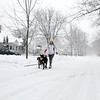 Alyse Daccardo walks her dogs Vinny and Maple on a Geneva street during Tuesday's snowstorm. (Sandy Bressner photo)