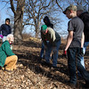 During the clean up Mary Olchenbacher (left) and volunteers discover a Praying-Mantas Egg at Bliss Woods Forest Preserve in Sugar Grove, IL on Saturday, March 23, 2013 (Sean King for The Kane County Chronicle)
