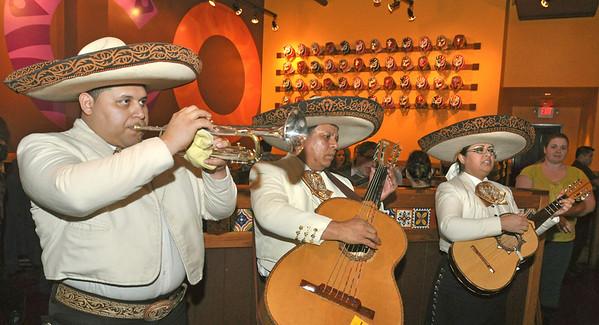 Mago Grill & Cantina's Thursday night mariachis