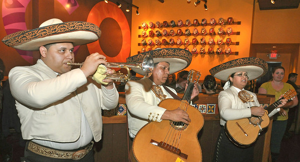 Mago Grill & Cantina's Thursday night mariachis