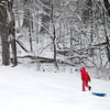 Ashlee Tompkins, 9, of Elburn heads back up the hill at Johnson's Mound Forest Preserve in Elburn during Tuesday's snowstorm.(Sandy Bressner photo)