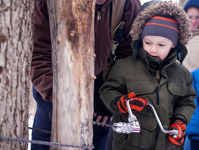 Kyle Grillot - kgrillot@shawmedia.com   Noah Weidner,  5, of Wauconda is helped to drill a hole into a log during the annual Festival of the Sugar Maples at Coral Woods Conservation Area Saturday in Marengo.
