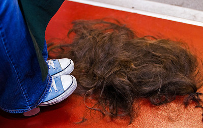Kyle Grillot - kgrillot@shawmedia.com   The hair of Melissa Murgalroyd of McHenry rests at her feet after her head shaved participating in the McHenry Community Shave for St. Baldrick's Day in McHenry Thursday, March 13, 2014. Over the past five years, McHenry East and West staff, students, and community members have had over 1900 heads shaved and raised over $489,000 for the St. Baldrick's Foundation.
