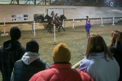 hnews_adv_vets_horses_5.jpg