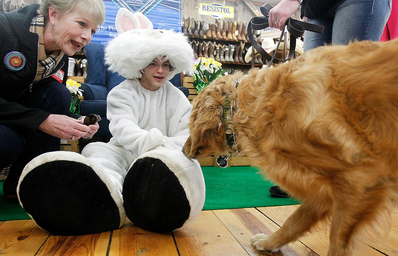2A_adv_easter_pets_01