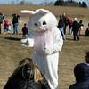 Jeff Krage – For Shaw Media<br /> The Easter Bunny greets families before Saturday's egg hunt at Stephen D.  Persinger Recreation Center in Geneva. <br /> Geneva 3/28/15