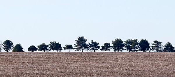 hnews_adv_trees_dot