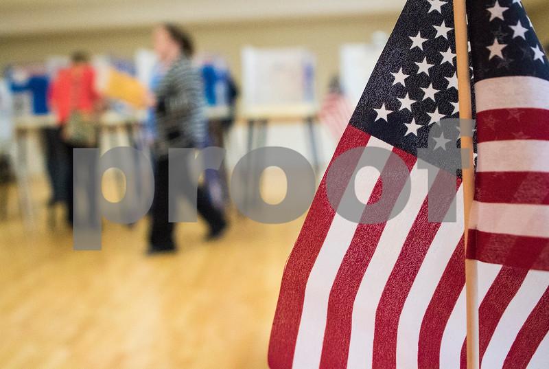 dnews_6_0316_Voting