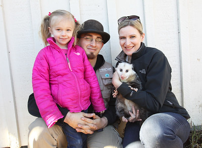 Candace H. Johnson-For Shaw Media Ava Reedy, 4, and her parents, Steve and Jessica, founders of Animal Quest, at their home in Antioch. Jessica was holding an opposum named, Opal, one of several animals they present at their exotic animal show.