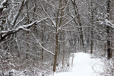 hnews_tue314_weather_snow5