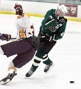 Crystal Lake South's Eric Helm is checked off the puck by Loyola Academy's Eagan Callahan during Friday's Blackhawk Cup White State Tournament championship at the Edge Ice Arena in Bensenville. The Gators lost 6-1.