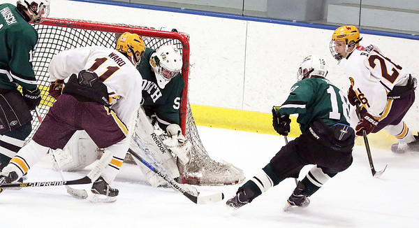 Crystal Lake South goalie Josh Albrecht makes a save during Friday's Blackhawk Cup White State Tournament championship against Loyola Academy at the Edge Ice Arena in Bensenville. The Gators lost 6-1.