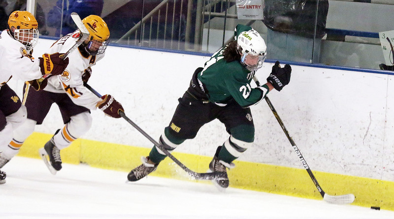 Crystal Lake South's Anthony Saputa is tripped up by Loyola Academy's Timmy Hackett during Friday's Blackhawk Cup White State Tournament championship at the Edge Ice Arena in Bensenville. The Gators lost 6-1.