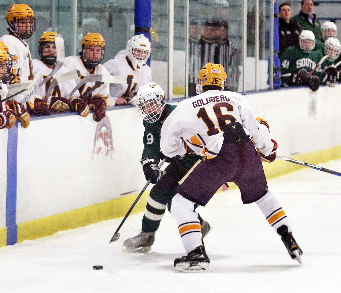 Crystal Lake South's Michael Helm sends the puck into the zone during Friday's Blackhawk Cup White State Tournament championship against Loyola Academy at the Edge Ice Arena in Bensenville. The Gators lost 6-1.